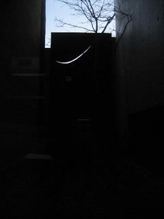 IMG_0173tuki.JPG